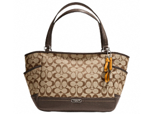 BRAND NEW Coach Park Signature Carrie F23297